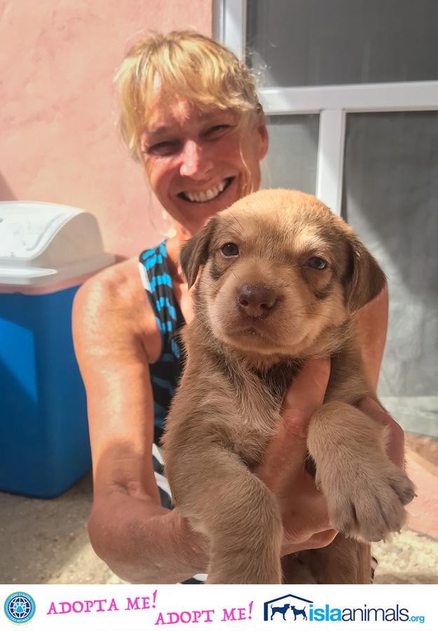Rachels-pup