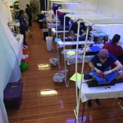 Over 520 Cats and Dogs Spayed and Neutered at the 2017 Rancho Viejo Campaign
